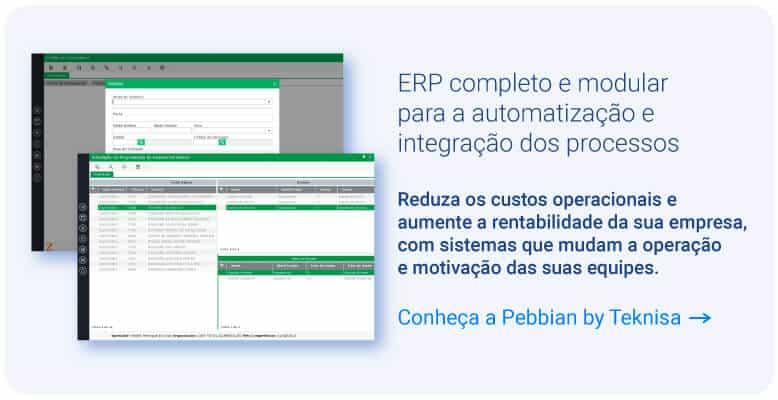 Software ERP da Teknisa