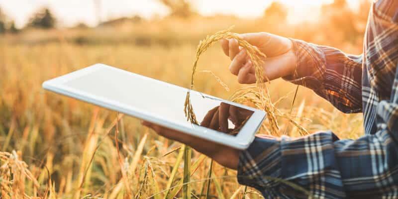 futuro da alimentação mundial